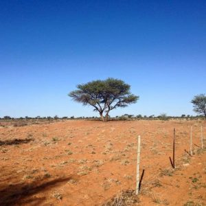 Viljelymaata Afrikassa